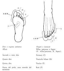 meridiani piede